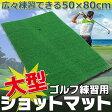 直送・代引不可 ゴルフ練習マット 打 スイングマット ショット用スタンスマット 別商品の同時注文不可