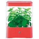 私の小さな野菜畑。【送料無料】ユーイング 水耕栽培器 Green Farm Cube レッド UH-CB01GR [UHC...