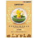 リーメント ポケットモンスター テラリウムコレクション 6個入りBOX(食玩) ECポケモンテラリウ