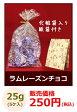 【バレンタイン】ラムレーズン チョコレート (国産) 25g(5ヶ入) 化粧袋入り《紙袋付き》【RCP】