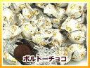 【3,000円(税別)で送料100円(税別)】ボルドーチョコレート (国産) 大袋 500g【RCP】