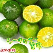 シークワーサー シークヮサー シークァーサー ヒラミレモン まとめ買い フルーツ