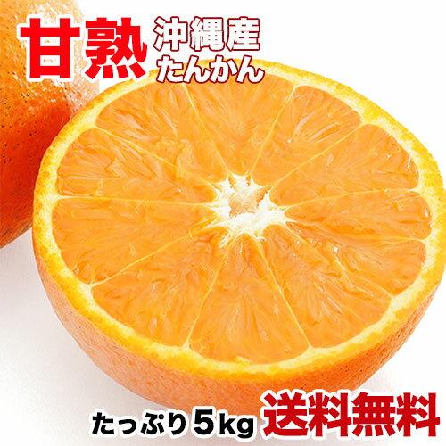 沖縄産 たんかん 5kg