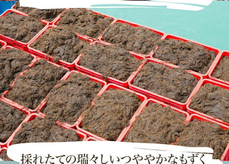 メール便 沖縄産もずく 500g 1000円ポッキリ!有数の名産地 勝連産太|もずく|2セット以上ご購入でオマケ付き! もずく酢ダイエットにどうぞ!※2セット以上ご購入で代引き可能です。※送料別商品と同梱でもになりません