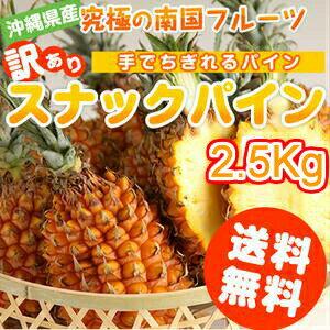 販売 スナックパイン沖縄県産2.5kg(2〜5玉)産地直送フルーツ果物(パイナップル)(お土産)沖縄土産通販ご当地訳ありスイ