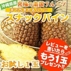 【送料無料】沖縄産.スナックパイン(ボゴールパイン
