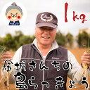 島らっきょう沖縄県産1kg 送料無料!2kgご購入で更に100gオマケ! レビュー1600件突…