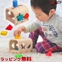 【Voila ボイラ 知育玩具】シェイプソーター | 誕生日 1歳 男 女 おもちゃ 木 2歳 知育...