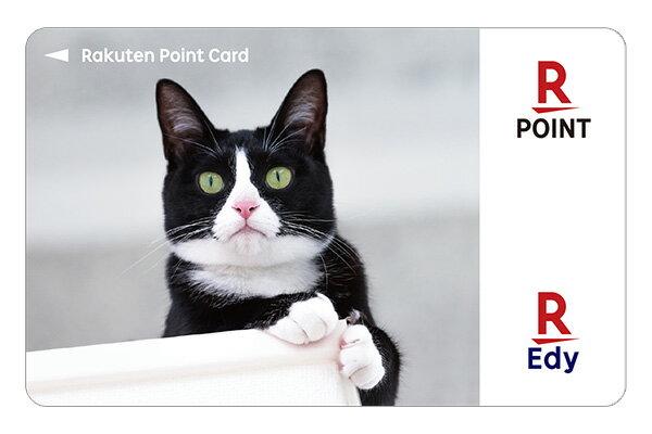 Edy-楽天ポイントカードアニマルシリーズ(靴下猫)の商品画像