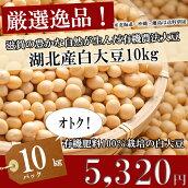 ○ジッコにも採用された白大豆!!湖北産白大豆10kg