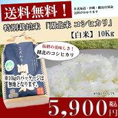 お米/湖北米コシヒカリ【白米】10kg特別栽培米【送料無料】(北海道、沖縄、離島を除く)
