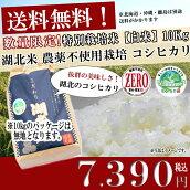 お米/湖北米農薬不使用米コシヒカリZERO【白米】10kg特別栽培米【送料無料(一部除く)】