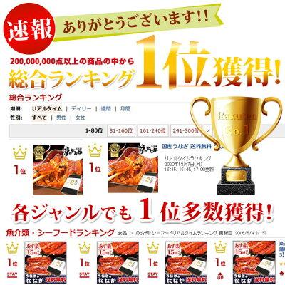 送料無料国産うなぎ蒲焼き3枚お祝い[Bset]BOX2