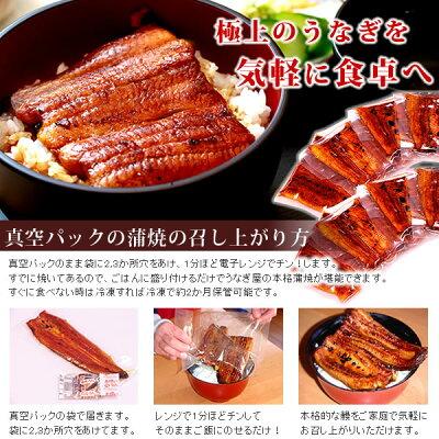 【送料無料】鰻蒲焼きギフト・プレゼントお祝い誕生日風呂敷・GIFT[うなぎのたなかF1004