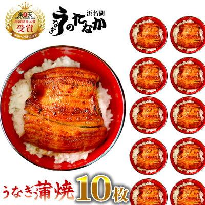 送料無料!国産ウナギ蒲焼き小ぶり蒲焼き(わけあり国内産小さめサイズ55〜60g)10枚お試しセットMC6-101