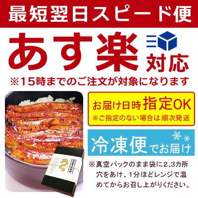 お中元ギフト送料無料!国産うなぎ蒲焼き2枚・お祝いAA[pon-2]BOXあす楽14