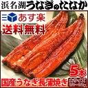 お中元ギフト送料無料!うなぎ長蒲焼き(150〜160g5本)...