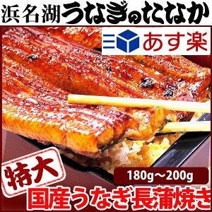 プレゼント tokudainagakaba