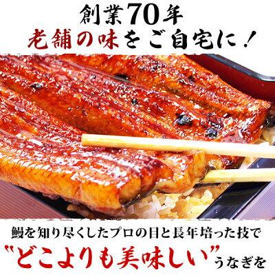 送料無料!国産ウナギ蒲焼き小ぶり蒲焼き(わけあり国内産小さめサイズ55〜60g)10枚お試しセットMC6-104