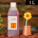 パレス化学 切花着色剤ファンタジー 1L オレンジ 茎 生花 ディスプレイ デコレーション フラワーアレンジ 植物 染色 染色液 園芸 ガーデニング 自由研究 実験 プリザーブド 手作り DIY インテリア ハーバリウム 染める