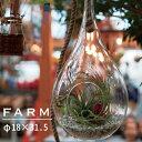 あす楽対応 FARM ラージハンギングベイス 32 93016 吊り下げタイプ ガラス鉢テラリウム ガーデニング エアープランツ 容器 エアプランツ ガラス インテリア ハンギング 吊るす シンプル