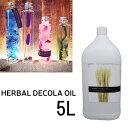 パレス化学 ハーバリウム専用オイル ハーバル デコラ オイル 5L ハーバリウム用 花材 材料 herbarium ドライフラワー パレス化学 パレス化 代引不可