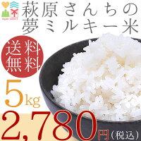 29年度!選べる白米・玄米!便利な5kg小分け済み!送料無料!安心の検査済み山口県産米5Kg、【送料無料】お米|新米|米|コメ