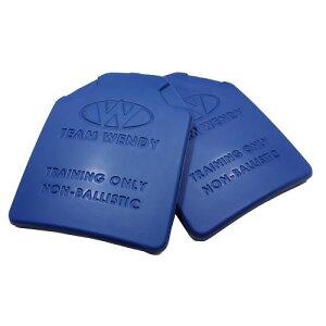在庫販売 チームウェンディ TEAM WENDY リアルウェイトダミープレート2枚組 重さ2.3kg 訓練用