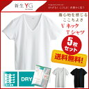 【グンゼ】【同色5枚セット】YG メンズインナー VネックTシャツ【ドライ】 吸汗&速乾  サイズ【M L】カラー【白、黒、ライトグレー】 送料無料 【楽天BOX対応商品】