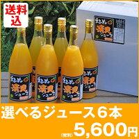 8種類から選べる柑橘ストレートジュース6本セット(愛媛産みかんを使用)【smtb-KD】