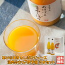 まるしぼりジュース2本セット (温州みかん×1本+伊予柑×1...