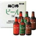 【愛媛地ビール】梅錦ビールピルスナー・ボック・アロマティックエール6本セット【専用箱入り】