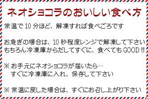 アイスネオショコラ10本入り(送料込)