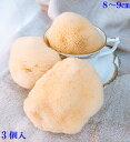 洗顔 化粧落とし【敏感肌をもち肌に】究極の柔らかさ天然海綿スポンジ高級シルクSS8〜9センチ3個入(ライトイエロー色)送料無料