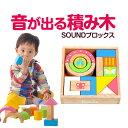 知育玩具 1歳 2歳 積み木 SOUNDブロックス(エデュテ...