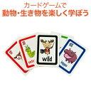 英語教材 Bigger Than Card Game ビッガーザンカードゲーム 動物単語 英単語 カードゲーム【送料無料】 家庭学習 自宅学習 家庭 自宅 学習