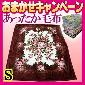 シングル マイヤー 掛け布団