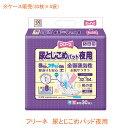 (代引き不可) フリーネ 尿とじこめパッド夜用 DSK-134 1ケース (30枚×4袋) 第一衛材 介護用品