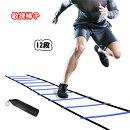 【送料無料】トレーニングラダー敏捷梯子マーカーコーン連結可能耐久性スピード/瞬発力/敏捷性/機敏性/協調性アップ野球サッカー練習収納袋付きはしごブルー