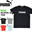 キッズ 半袖 Tシャツ プーマ PUMA ALPHA SS Tシャツ ジュニア 子供 男の子 女の子 ロゴ プリント 子供服 2019春新作 得割20 843885