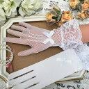 レース グローブ レディース 手袋 アームカバー ストレッチ 衣装 白 ダンス衣装 バレエ衣装 イベント 社交ダンス ホワイト ブライダル ウェディング