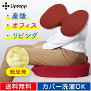 Lipropp 低反発 シートクッション 長時間座っても痛くない 骨盤矯正 腰痛対策 滑り止め付き 洗えるカバー付き カラー:カーマイン