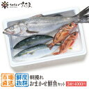 鮮魚セット4000円コース朝獲れおまかせ鮮魚(3種以上)詰め