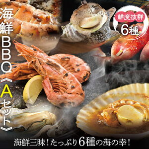 海鮮 BBQセット バーベキューセット A 6種13品 3〜4人前【冷凍便】