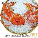 越前がに 越前蟹《極》 水揚げ全体の約0.5%以下という超希少な蟹 ズワイガニ 【冷蔵便】