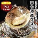 海鮮 BBQセット 日本海産 さざえ 1kg【冷凍便】