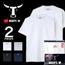 期間限定セール ヘインズ ビーフィー 2枚組 Hanes BEEFY Tシャツ クルーネック 2パック 半袖 パックT インナー トップス メンズ ユニセックス H5180-2