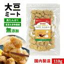 大豆ミート 国内製造 無添加 からあげ SOYKARA ソイから 大豆 ミート 唐揚げ 大豆肉 ブロック 大豆たんぱく ソイミート 110g