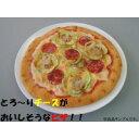 日本職人が作る食品サンプル ピザ IP-170