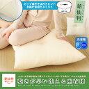 乾きが早い洗える座布団 55×59cm 銘仙判 ざぶとん ザブトン 洗える ウォッシャブル 丸洗い 日本製 水切りメッシュ ヌードクッション cushion エムール